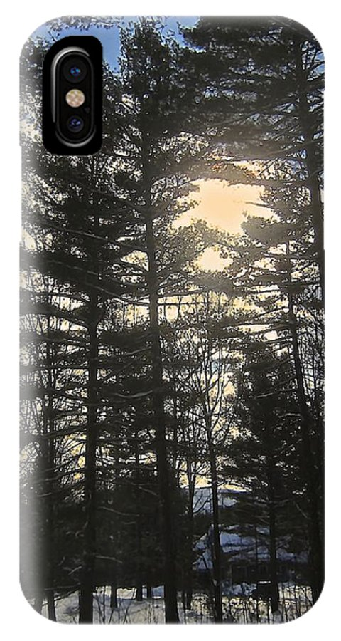 Pines IPhone X Case featuring the photograph Straining To Win The Sky by Elizabeth Tillar
