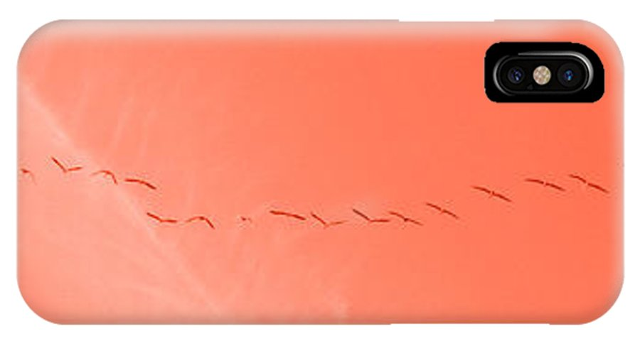 Birds IPhone X Case featuring the photograph String Of Brids In Red by Mary Mikawoz