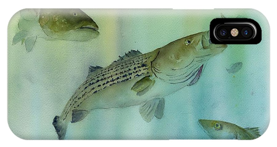 Striped Bass IPhone X Case featuring the painting Striped Bass On The Feed by Paul Temple