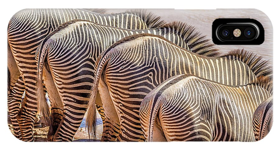 Africa IPhone X Case featuring the photograph Stripes 7578 by Karen Celella