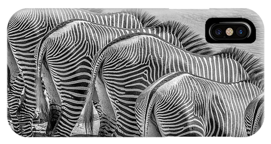 Africa IPhone X Case featuring the photograph Stripes 7578bw by Karen Celella