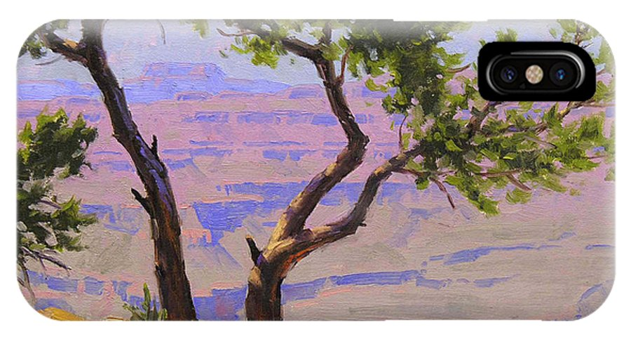 Grand Canyon IPhone X Case featuring the painting Study For Canyon Portal by Cody DeLong