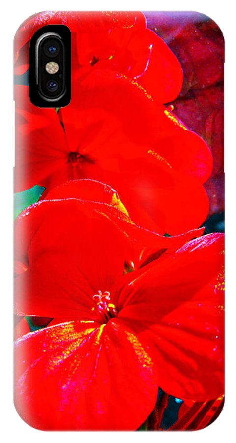 Pelargonium IPhone X / XS Case featuring the photograph Study In Red by Alexandra Cook