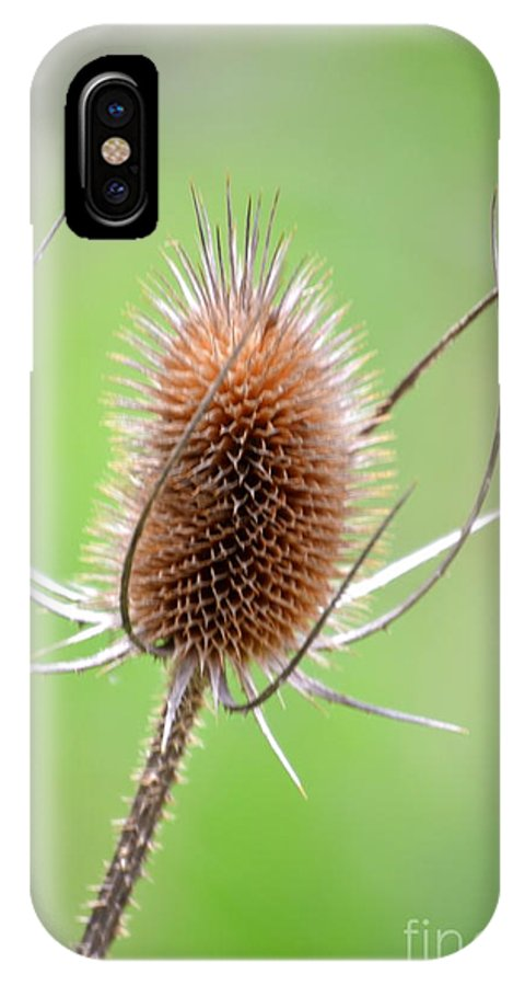 Irfan'scollection IPhone X / XS Case featuring the photograph Style by Irfan Gillani