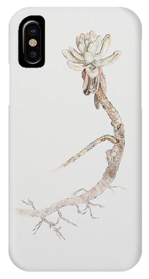 Succulent IPhone X Case featuring the painting Succulent by Michelle Miron-Rebbe