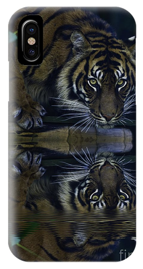 Sumatran Tiger IPhone X Case featuring the photograph Sumatran Tiger Reflection by Sheila Smart Fine Art Photography