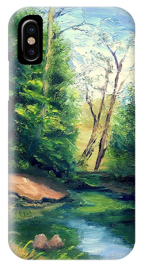 Landscape IPhone X Case featuring the painting Summer At Storm by Gail Kirtz