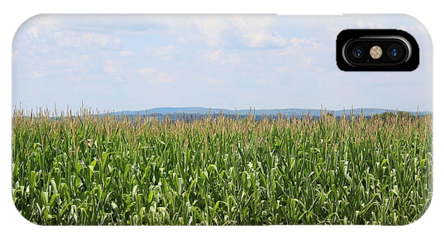 Corn IPhone X Case featuring the photograph Summer Corn And Blue Skies In Maine by Colleen Snow
