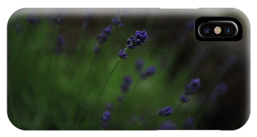 Landscape IPhone X Case featuring the photograph Summer Scent Of Lavender by Randi Grace Nilsberg