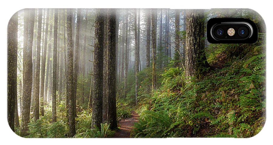 Washington IPhone X Case featuring the photograph Sun Beams Along Hiking Trail In Washington State Park by David Gn