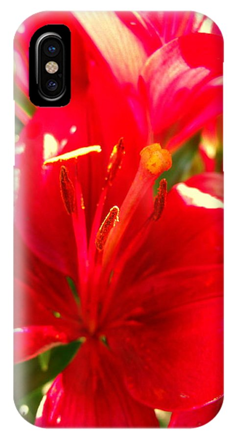 Lily IPhone X Case featuring the photograph Sun Dappled Lily by Erin Rednour