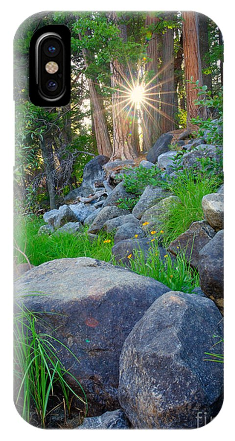 National Park IPhone X Case featuring the photograph Sun In The Sequoias by Idaho Scenic Images Linda Lantzy