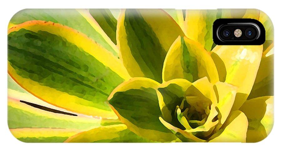 Landscape IPhone X Case featuring the photograph Sunburst Succulent Close-up 2 by Amy Vangsgard