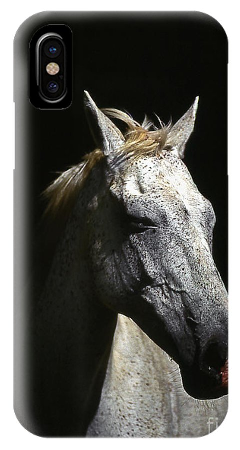 Horse IPhone Case featuring the photograph Sundance by Jim Cazel