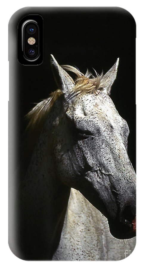 Horse IPhone X Case featuring the photograph Sundance by Jim Cazel