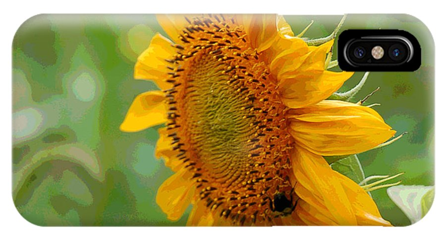 Sunflower IPhone X Case featuring the photograph Sunflower Fun by Suzanne Gaff