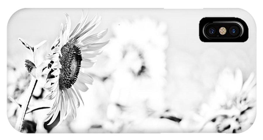 Flower IPhone X Case featuring the photograph Sunflower by Gabriela Insuratelu