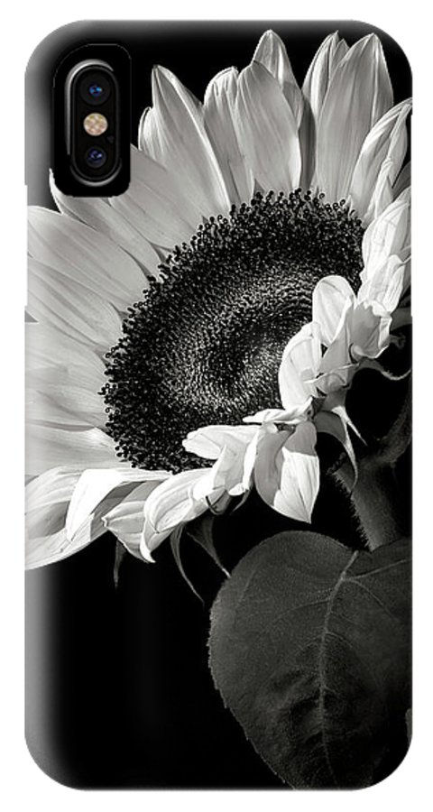 Flower IPhone X Case featuring the photograph Sunflower In Black And White by Endre Balogh
