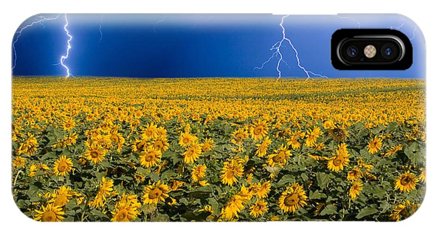 Sunflowers IPhone X Case featuring the photograph Sunflower Lightning Field by James BO Insogna