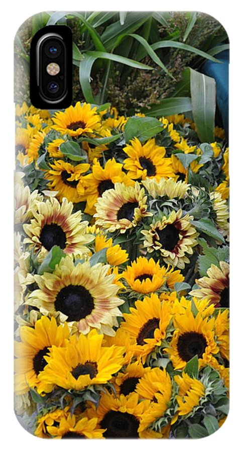 Flowers. Sunflowers IPhone X Case featuring the photograph Sunflowers For Sale by Vijay Sharon Govender