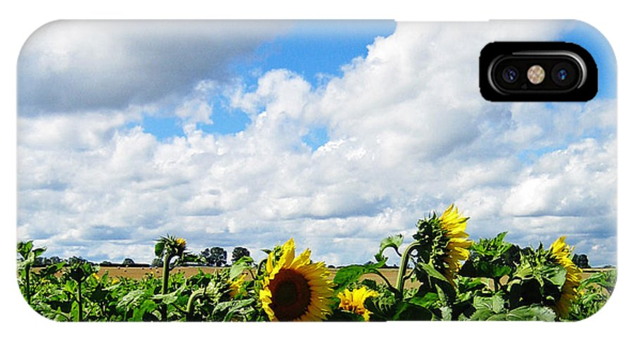 Sunflowers IPhone X Case featuring the photograph Sunflowers by Jeff Barrett
