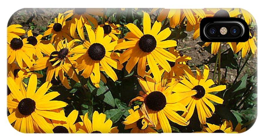 Landscape IPhone X Case featuring the photograph Sunflowers by Jo Dawkins