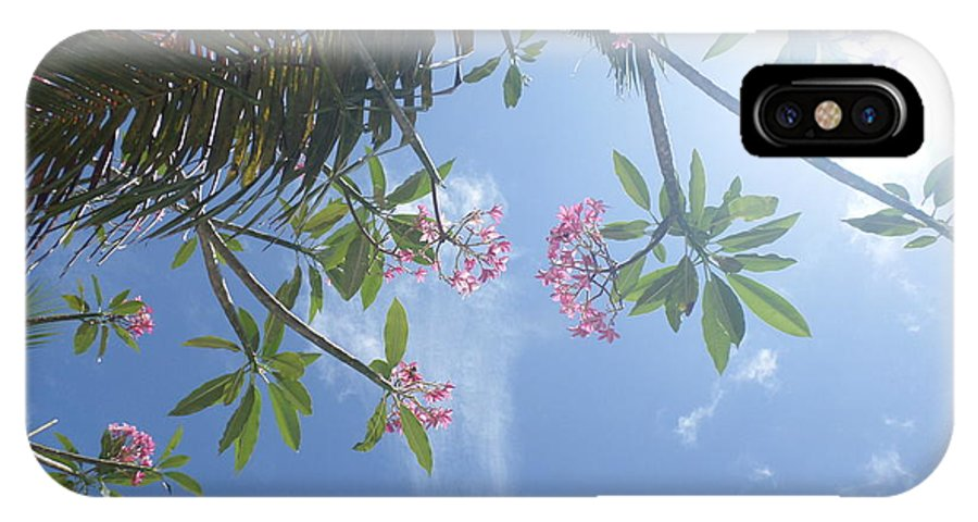 Nature IPhone X Case featuring the photograph Sunglasses Required by Nancy Smith