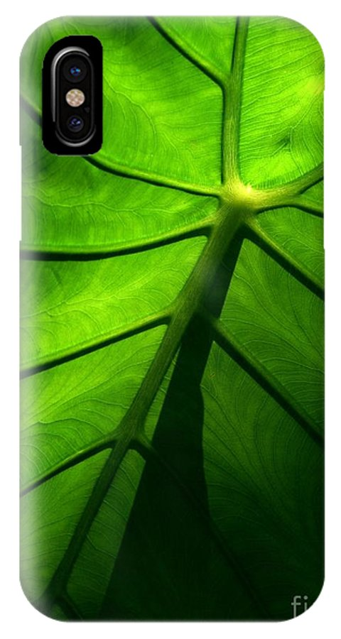 Green IPhone X Case featuring the photograph Sunglow Green Leaf by Patricia L Davidson
