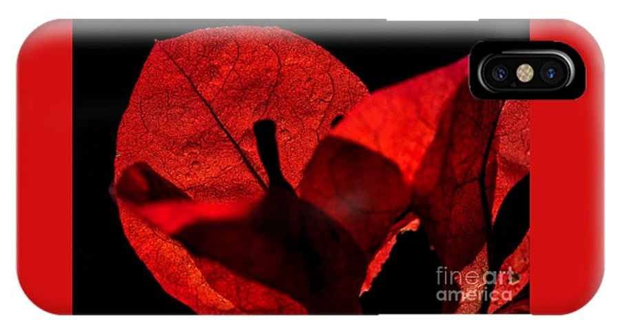 Photography IPhone X Case featuring the photograph Sunlight Behind The Petals by Kaye Menner
