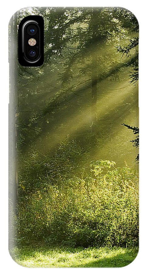 Nature IPhone X Case featuring the photograph Sunlight by Daniel Csoka