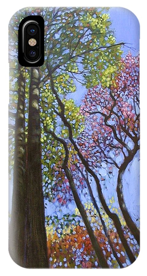 Fall Trees Highlighted By The Sun IPhone X Case featuring the painting Sunlight On Upper Branches by John Lautermilch