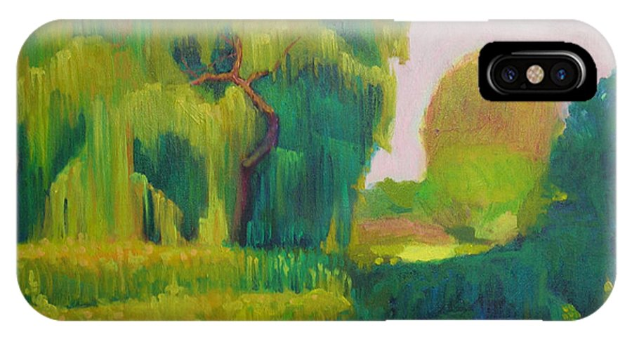 Landscape IPhone X Case featuring the painting Sunny Day Indian Boundary Park by David Dozier