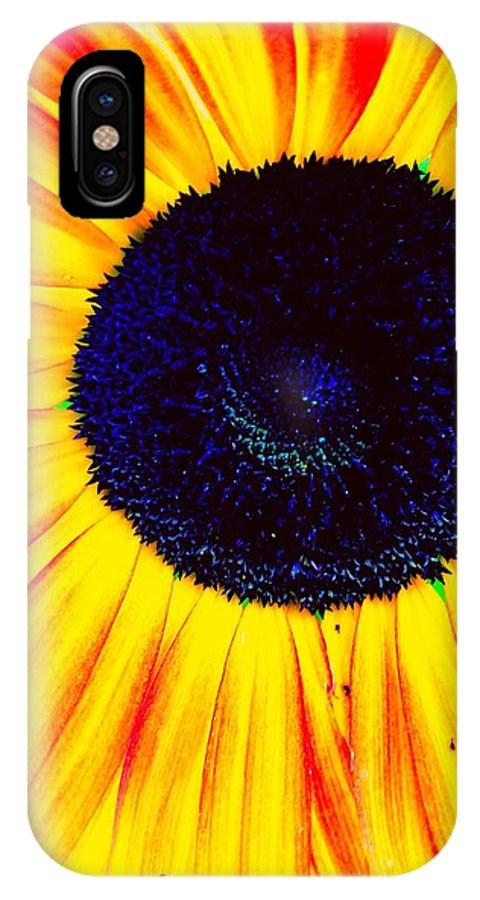Bright Yellow Sunflower. IPhone X Case featuring the photograph Sunny Flower by Michele Roehl