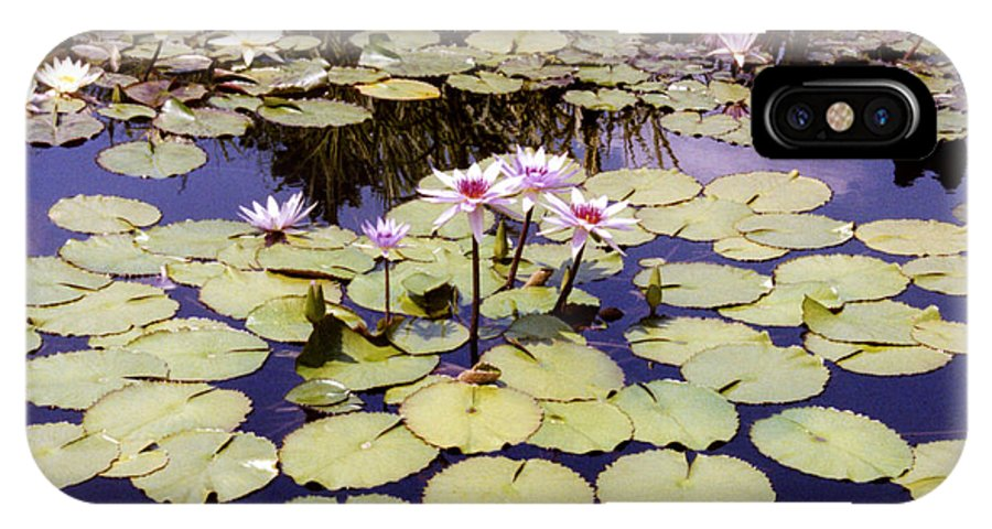 Floral IPhone X Case featuring the photograph Sunny Waterlilies by Jan Amiss Photography