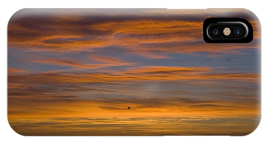 Sun Sunrise Cloud Clouds Morning Early Bright Orange Bird Flight Fly Flying Blue Ocean Water Waves IPhone Case featuring the photograph Sunrise by Andrei Shliakhau