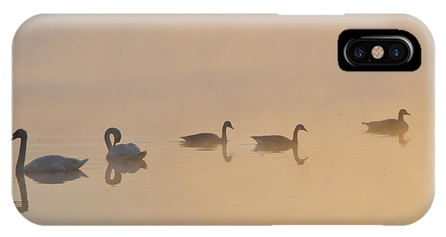 IPhone X Case featuring the photograph Sunrise Gathering by Catherine Reusch Daley