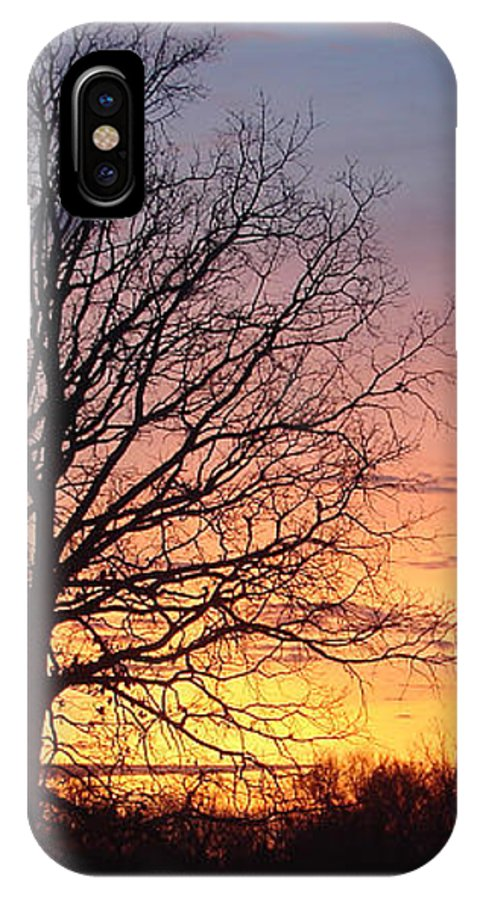 Tree Black Orange IPhone X Case featuring the photograph Sunrise In Illinois by Luciana Seymour