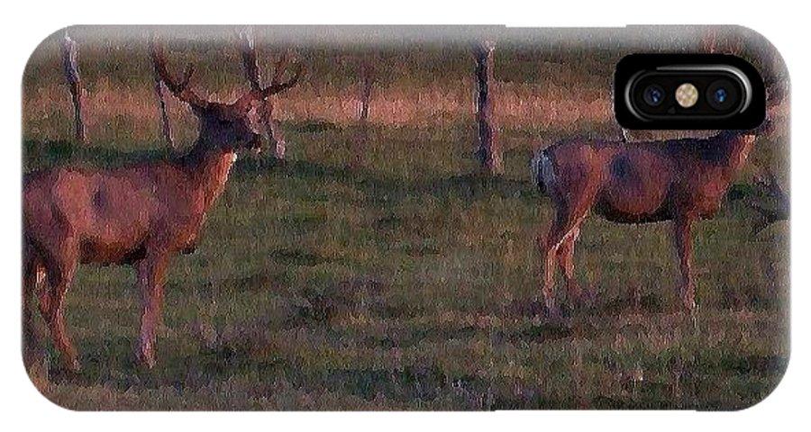 Deer IPhone X Case featuring the photograph Sunset Deer II by Tina Barnash
