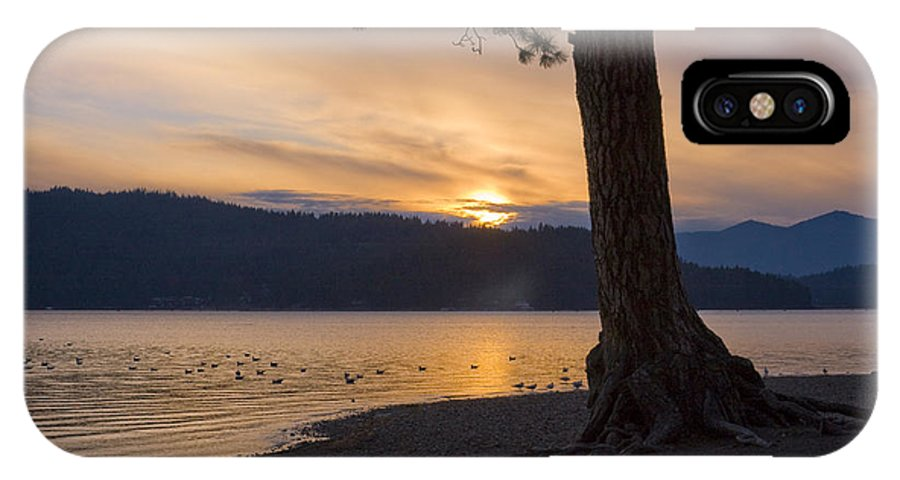 Sunset IPhone Case featuring the photograph Sunset Silhouette by Idaho Scenic Images Linda Lantzy