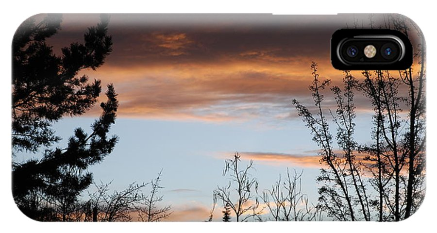 Sunset IPhone Case featuring the photograph Sunset Thru The Trees by Rob Hans