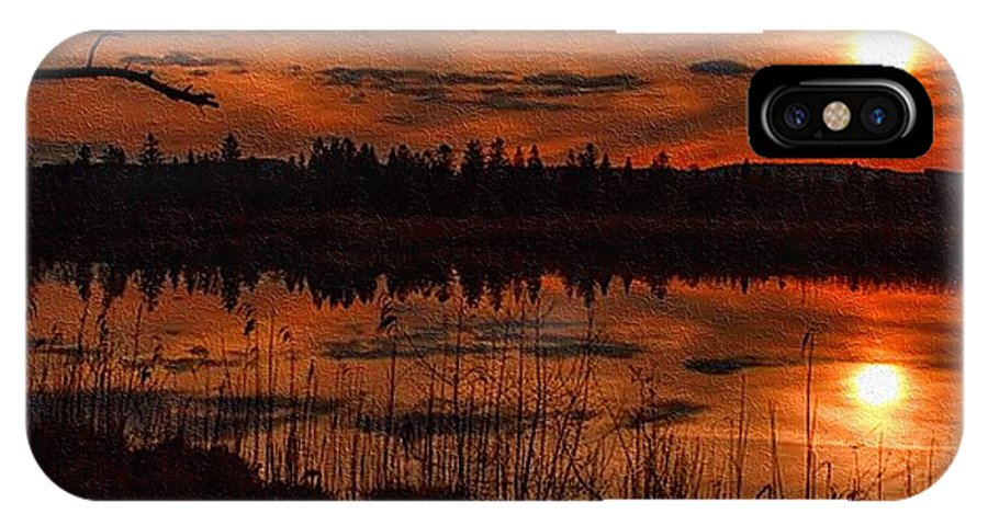 Rural IPhone X / XS Case featuring the painting Sunsettia Gloria Catus 1 No. 1 L B. by Gert J Rheeders