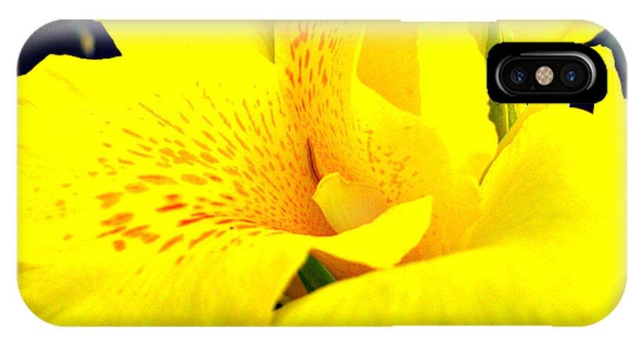 Sunshine Brilliance IPhone X Case featuring the photograph Sunshine Brilliance by Debra   Vatalaro