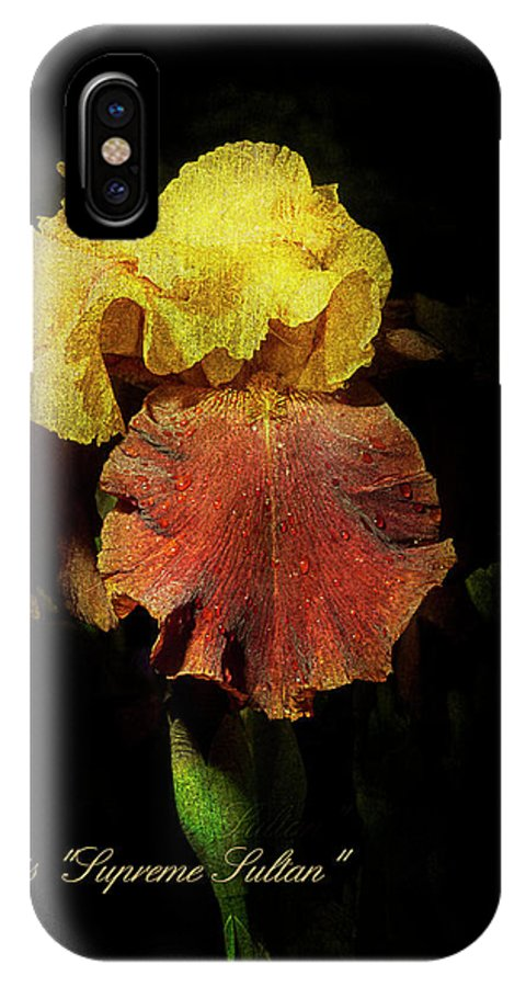 Agriculture IPhone X Case featuring the photograph Supreme Sultan Iris by John Trax