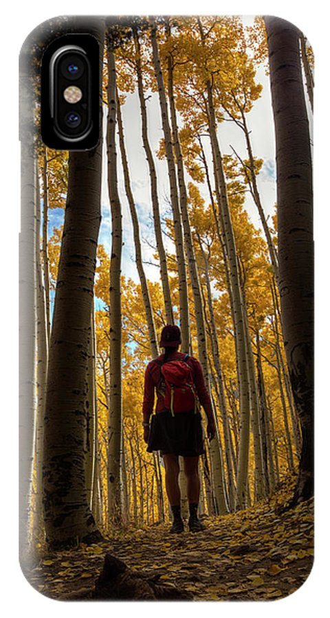 Autumn IPhone X Case featuring the photograph Surrounded By Nature by Sue Cullumber
