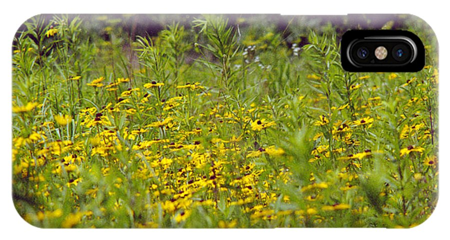 Nature IPhone X Case featuring the photograph Susans in a Green Field by Randy Oberg