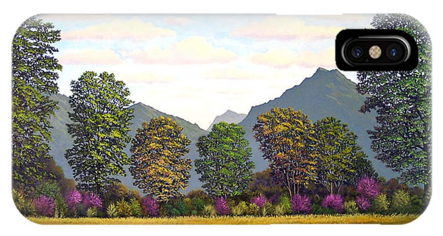 Mountains IPhone X Case featuring the painting Sutter Buttes In Springtime by Frank Wilson
