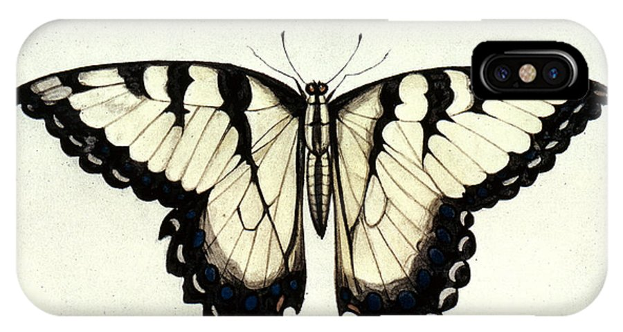 1585 IPhone X Case featuring the photograph Swallow-tail Butterfly by Granger