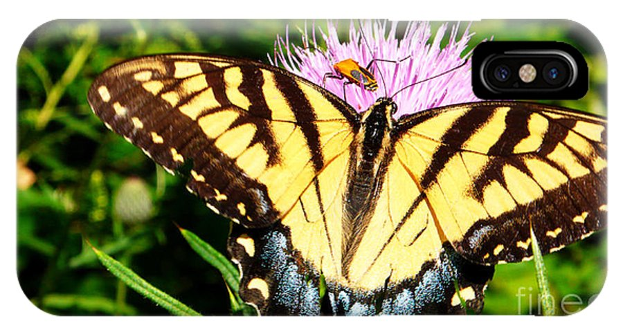 Eastern Tiger Swallowtail Butterfly IPhone X Case featuring the photograph Swallowtail On Thistle by Thomas R Fletcher