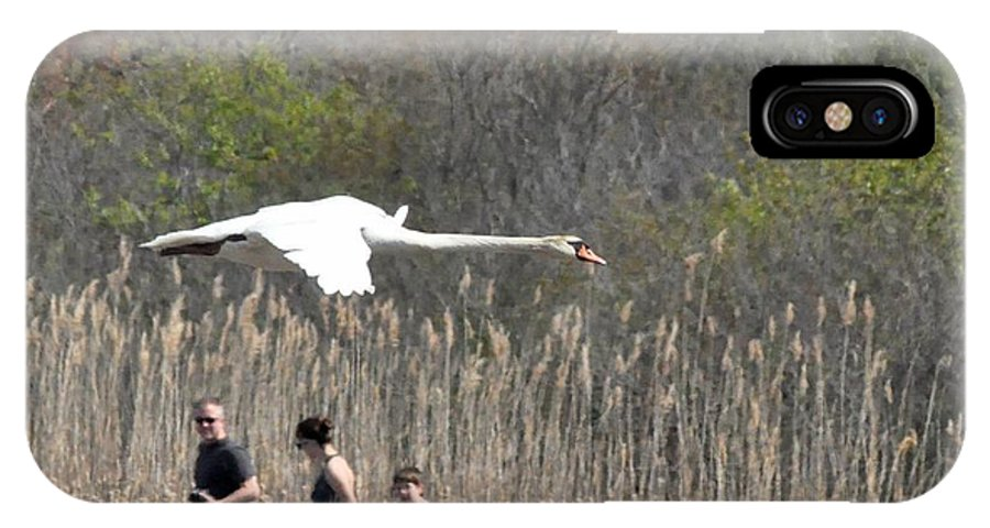 Swans IPhone X Case featuring the photograph Swan In Flight by Jo-Ann Matthews
