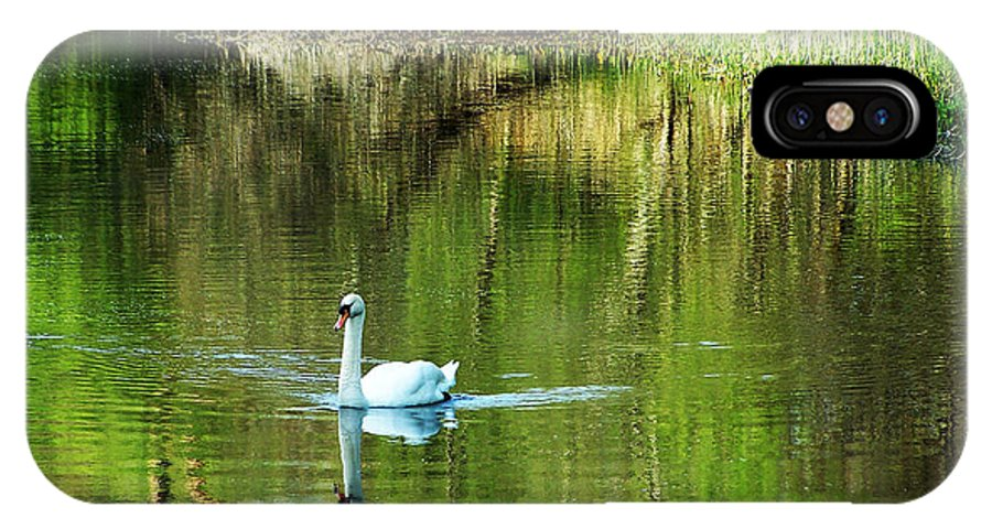 Irish IPhone Case featuring the photograph Swan On The Cong River Cong Ireland by Teresa Mucha